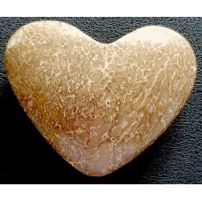 Dinosaur Bone Heart